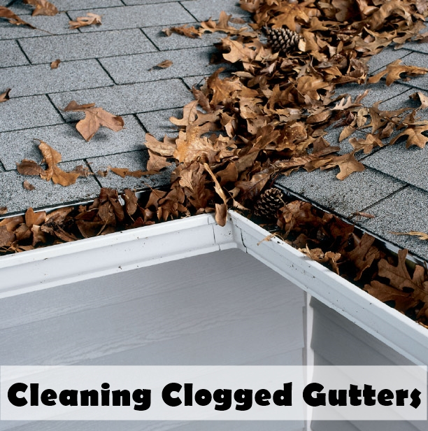 Cleaning Clogged Gutters