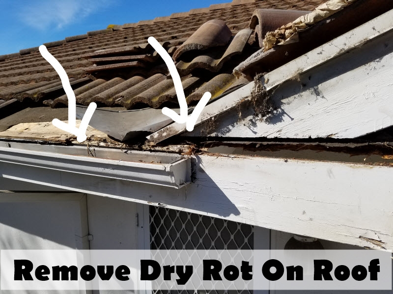 remove Dry Rot on roof