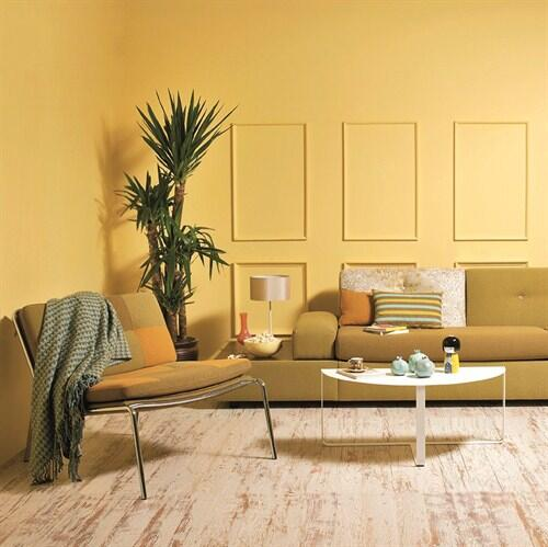 Light yellow summer look wall color